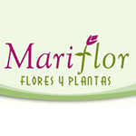 logo-mariflor