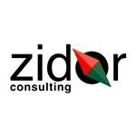 logo-zidor-consulting
