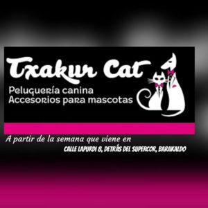 TXAKUR CAT