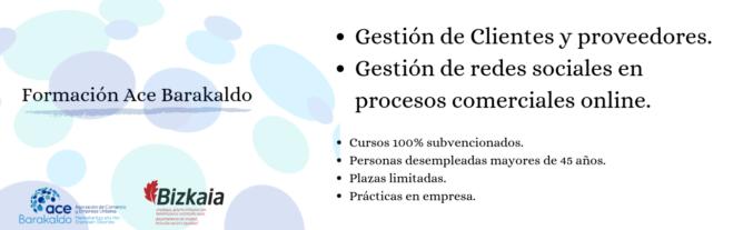 banner web 2 cursos